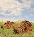 Free Hay Bales Royalty Free Stock Photos - 3916278