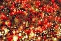 Free 17th November Candles Stock Photos - 3916623