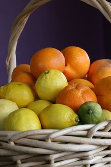 Free A Basket Of Citrus Fruit Stock Image - 3911911