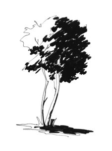 Free Sketch Of Lonely Tree Royalty Free Stock Photography - 3915737