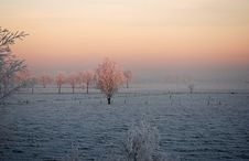 Free Winter Landscape Royalty Free Stock Image - 3915786
