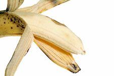 Free Banana Stock Photos - 3916223