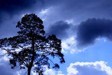 The Navy Blue Sky Stock Photography