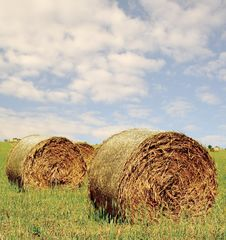 Free Hay Bales Royalty Free Stock Photos - 3916278