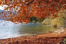 Free Autumn At The Lake Royalty Free Stock Photos - 3919848