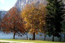 Free Autumn At The Lake 2 Stock Photo - 3919860