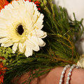 Free Bride Holding Bouquet Royalty Free Stock Photography - 3921937