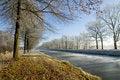 Free Winter Wonderland Royalty Free Stock Image - 3924196