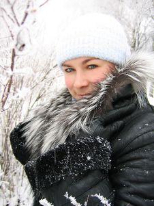Free Winter Stock Image - 3921051