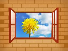 Free Window With Dandelion Stock Photo - 3921080