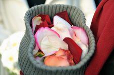 Free Wedding Flowers Stock Photos - 3921893