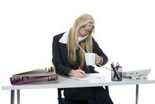 Free Bussines Woman  Working Stock Photo - 3924890