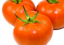 Free Three Tomatoes Isolated Royalty Free Stock Photography - 3926307