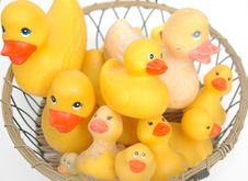 Basket Of Old And New Rubber Ducks Royalty Free Stock Images