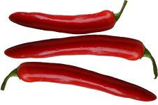 Free Hot Pepper. Stock Photos - 3931393