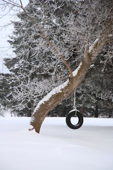 Free Cold Tire Swing Royalty Free Stock Images - 3933119