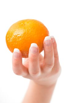 Free Womans Hand Holding A Mandarin Stock Image - 3933491