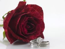 Free Valentines Engagement Royalty Free Stock Photography - 3936067