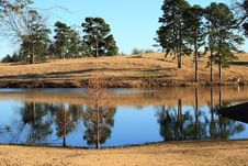 Free Winter Pond Stock Photos - 3938783
