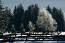 Free Winter Landscape No.1 Stock Image - 3938951