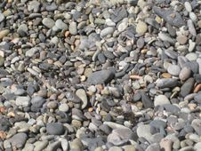 Free Stony Beach Stock Photography - 3939782