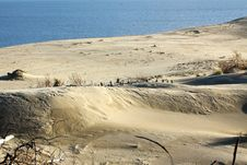 Sand Dune At The Seaside Stock Images
