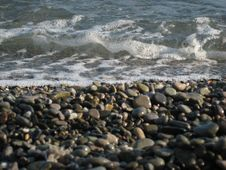 Free Stony Beach Royalty Free Stock Image - 3940046