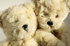 Free Two Little Cute Bears Royalty Free Stock Images - 3940299