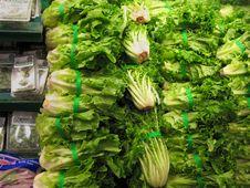 Free Green Leaf Vegetables (Lettuce) Stock Photos - 3940463