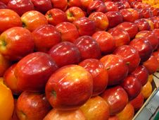 Free Fresh Fruits Apples Royalty Free Stock Photos - 3940608
