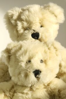Free Two Little Cute Bears Stock Image - 3942281