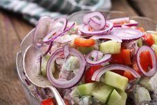 Free Onion Salad Stock Photos - 3943693
