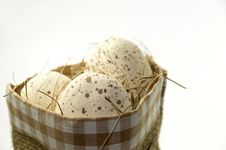 Free Natural Easter Eggs Royalty Free Stock Photo - 3945785
