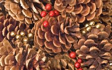 Free Pinecone Background Stock Photography - 3946202