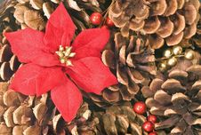 Free Pinecone And Poinsettia Background Royalty Free Stock Photo - 3946205
