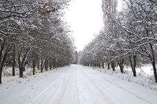 Free Winter Stock Photos - 3947043