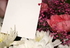 Gift Of Flowers Royalty Free Stock Photos