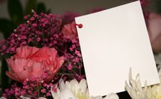 Free Card On Flowers Stock Photo - 3949330
