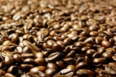 Free Coffee Beans Royalty Free Stock Photos - 3952678