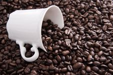 Free Coffee Cup Stock Photos - 3954723
