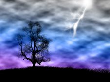 Free Tree In The Storm Royalty Free Stock Photography - 3955147