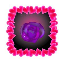 Free Violet Rose Royalty Free Stock Photo - 3955635