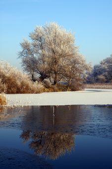 Free Winter Landscape Stock Photography - 3956132