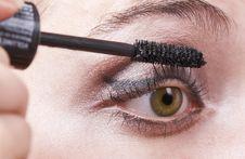Free Woman Applying Mascara, Volume Brush Royalty Free Stock Image - 3956676