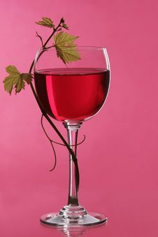 Free Red Wine Stock Images - 3957294