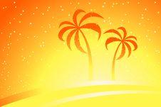 Free Palm Trees Stock Photo - 3958720
