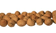 Free Walnuts Stock Images - 3959184