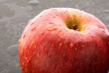 Free Macro Red Apple Royalty Free Stock Images - 3959689