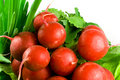 Free Bunch Of Radishes,lettuce And Chive Stock Photo - 3967110