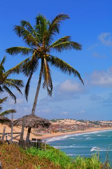 Free Tropical View Royalty Free Stock Photos - 3960378